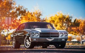 Машины: мускул кар, Chevrolet, шевель, шевроле, блик, перед
