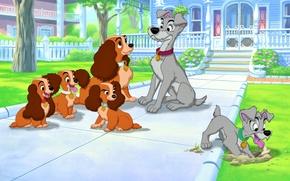 Фильмы: американский кокер-спаниель, Леди и Бродяга, студия Уолта Диснея, кость, Гомер, Бродяга, собаки, дом, щенки, Леди, бездомный пёс, Уолт Дисней, мультфильм