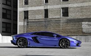 Машины: диски, ламборгини, Lamborghini, авентадор, профиль, синий