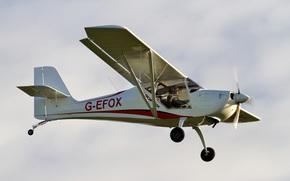 Авиация: двухместный, небо, одномоторный, самолёт, легкий
