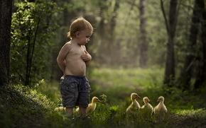 Ситуации: малчик, лето, настроение, утки