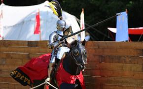 Мужчины: рыцарь, турнир, лошадь, конь, металл, доспехи, воин