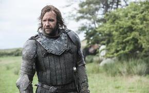 Мужчины: Сандор Клиган, природа, воин, пес, доспехи, Игра престолов