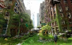 Фантастика: город, остов, заросли, арт, руины, человек, машины, самолет, постапокалипсис