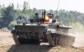 Оружие: пехоты, боевая, машина