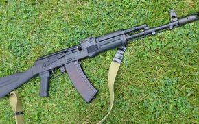 Оружие: трава, ружьё, самозарядное, карабин, Сайга
