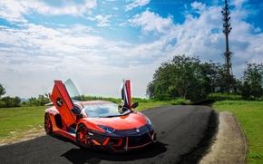Машины: газон, Lamborghini, небо, вид спереди, облака, дорога, деревья, авентадор, оранжевый, ламборгини