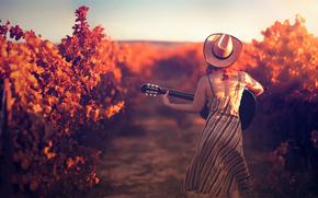 Музыка: шляпа, девушка, гитара, виноградник