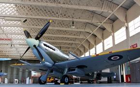 Авиация: британский, музей, самолёт, одноместный истребитель