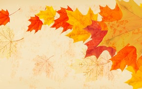 Минимализм: осень, листья, ветер