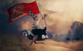Ситуации: флаг, лозунг, пустыня, страус, мужик