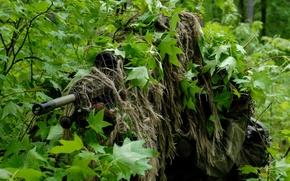 Оружие: лес, снайпер, прицел, кусты, листва, маскировка, оружие, укрытие