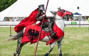 Мужчины: доспехи, воин, конь, лошадь, рыцарь, металл
