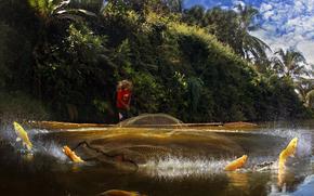 Ситуации: рыбак, рыба, всплеск, сеть, заброс
