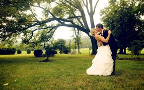Праздники: поцелуй, белое, костюм, дерево, парень, девушка, жених, невеста, платье, трава, зелень