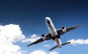 Авиация: самолет, небо