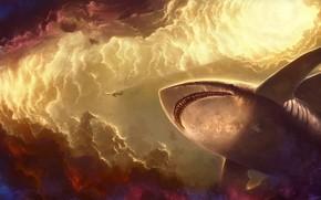 Фантастика: рыба, фантазия, небо, звезды, арт, облака, акула, гигантская, свет, самолет