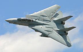 Авиация: реактивный, «Томкэт», двухместный, истребитель