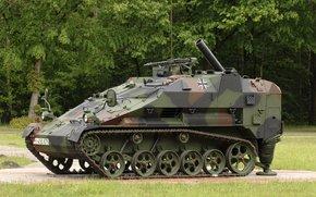 Оружие: боевая, германская, лёгкая, гусеничная, самоходный миномёт, авиадесантируемая, машина, бронетранспортёр