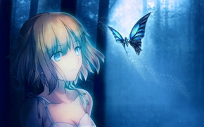 Аниме: девушка, луна, бабочка, арт, ночь