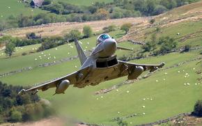 Авиация: самолёт, оружие, авиация