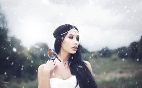 Ситуации: девушка, птичка, снег, портрет