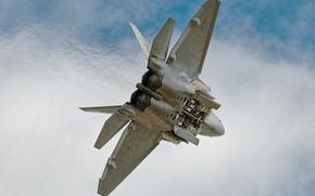 Авиация: полёт, самолёт