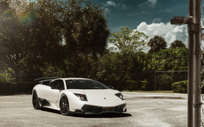 Машины: мурселаго, деревья, ламборджини, белая, Lamborghini