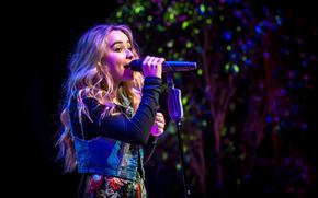Музыка: певица, актриса, Девочка покоряет мир