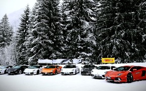 Машины: Lamborghini