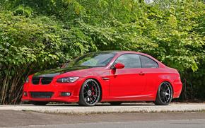 ������: ������, BMW, ���, ������ �����, �������, ����
