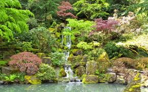 �������: �����, �������, �����, �������, ���, Japanese Garden