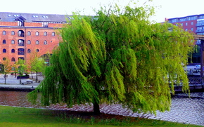 �������: canals, Castlefield, Manchester