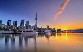 �����: Toronto, Canada, �����, �����