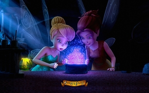 ����: DISNEY MOVIE, THE PIRATE FAIRY, 3d