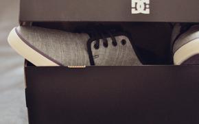 �����: DC, shoes, skate