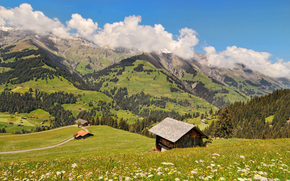�������: Berner Oberland, Switzerland, ����, �����, ����, �������, ������
