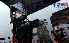 Аниме: Аниме, Токийский гуль, Канеки