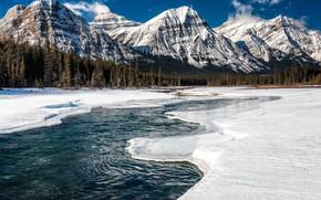 �������: Jasper National Park, Athabasca River, ����, ����, �������, ������