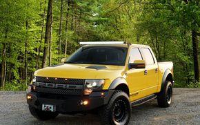 Машины: Ford, лес, автомобиль, дорога в лесу