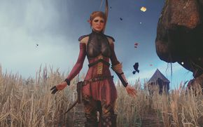 Игры: the_witcher_3_wild_hunt, for honor, glory, girl, field, gear, magic