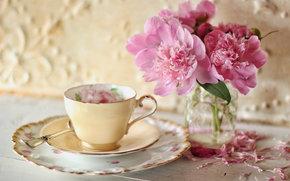 Стиль: цветы, пионы, лепестки, чашка, блюдце