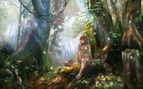 Рендеринг: рисунок, лес, девушка, животные, романтика, белка, заяц, цветы, грибы