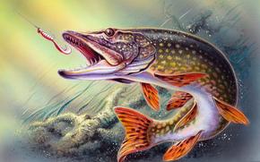 Разное: рыбалка, вода, рыба, щука, крючок, рисунок