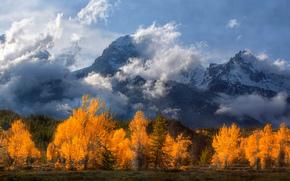 �������: Grand Teton National Park, Wyoming, Rocky Mountains, �����-�����, ��������, ��������� ����, ����, ������, �������, �����