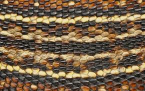 Текстуры: змеиная кожа, змея, кожа, макро