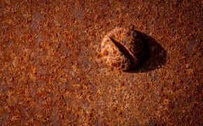 Минимализм: болт, ржавчина, металл, макро