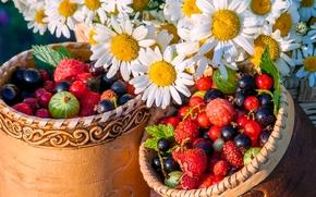 Разное: ягоды, ромашки, цветы, туески