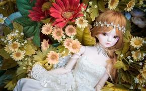 Разное: игрушка, кукла, цветы