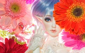 Разное: игрушка, кукла, эльф, цветы, герберы